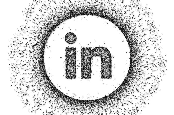 Soziales Netzwerk mit Potenzial: B2B-Kommunikation aufLinkedIn